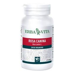 ERBA VITA INTEGRATORE ROSA CANINA 60 CAPSULE 400mg
